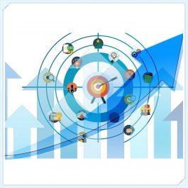 Consultoría y Mentoring